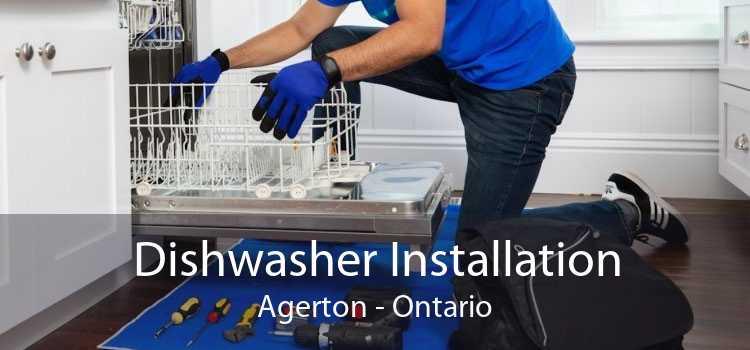 Dishwasher Installation Agerton - Ontario