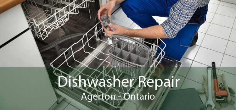 Dishwasher Repair Agerton - Ontario