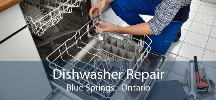 Dishwasher Repair Blue Springs - Ontario