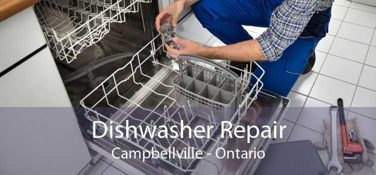 Dishwasher Repair Campbellville - Ontario