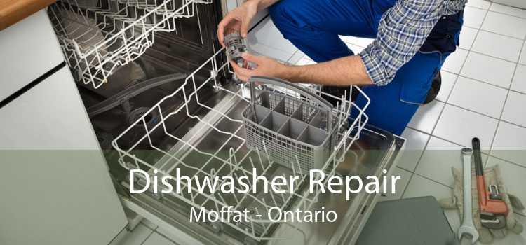 Dishwasher Repair Moffat - Ontario