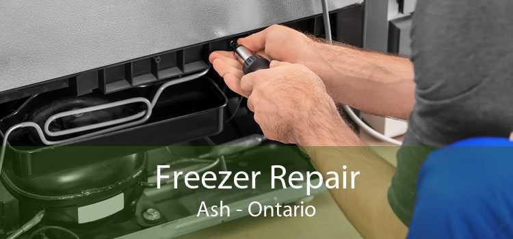 Freezer Repair Ash - Ontario