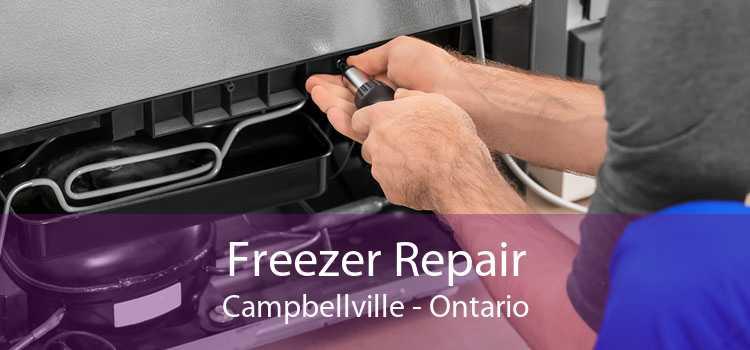 Freezer Repair Campbellville - Ontario