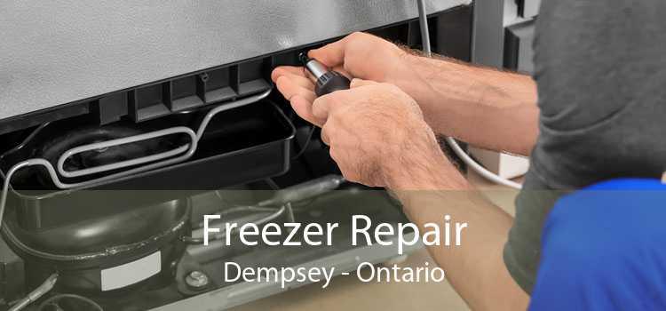 Freezer Repair Dempsey - Ontario