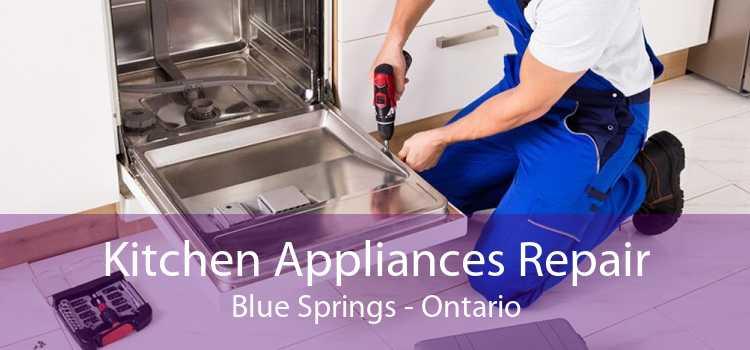 Kitchen Appliances Repair Blue Springs - Ontario