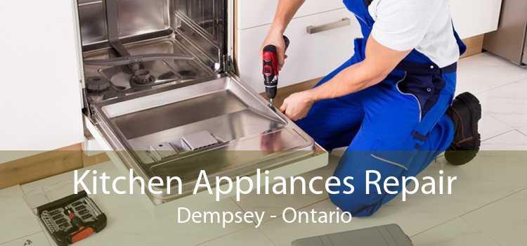 Kitchen Appliances Repair Dempsey - Ontario