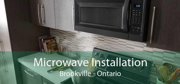 Microwave Installation Brookville - Ontario