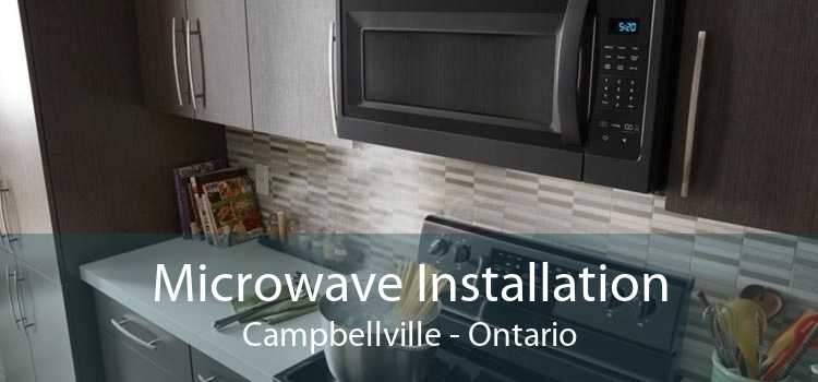 Microwave Installation Campbellville - Ontario