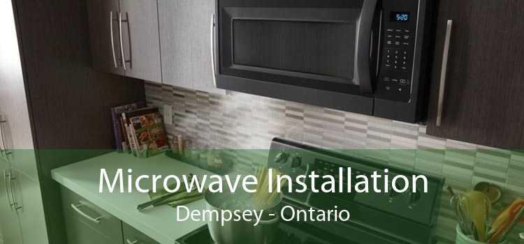 Microwave Installation Dempsey - Ontario