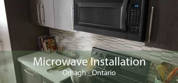 Microwave Installation Omagh - Ontario