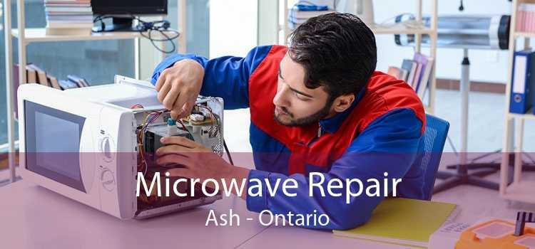 Microwave Repair Ash - Ontario