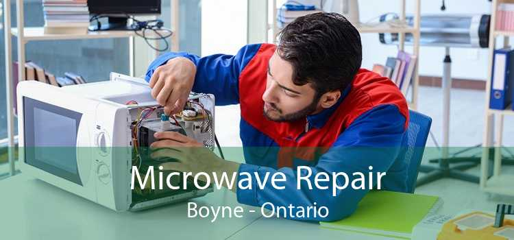 Microwave Repair Boyne - Ontario