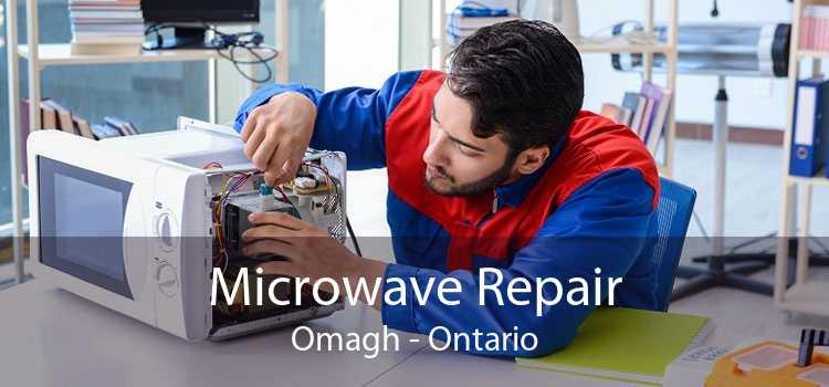 Microwave Repair Omagh - Ontario