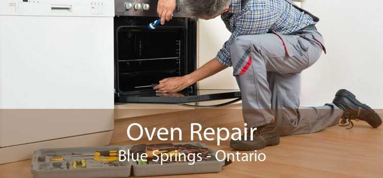 Oven Repair Blue Springs - Ontario