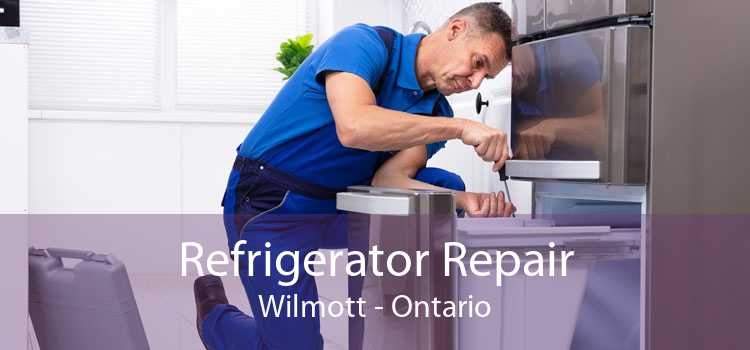 Refrigerator Repair Wilmott - Ontario